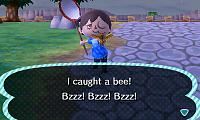 Click image for larger version  Name:I FINALLY GOT A BEE.JPG Views:331 Size:27.4 KB ID:4980