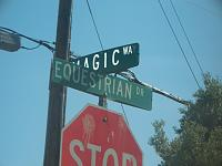Click image for larger version  Name:Equestrian and Magic.jpg Views:259 Size:190.7 KB ID:2608