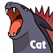 Cat333Pokémon's Avatar